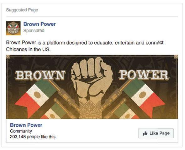 2_brownpower